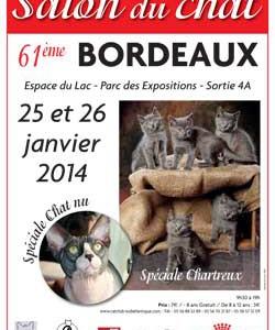 Salon du Chat de Bordeaux