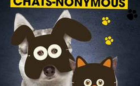 L'exposition : Chiens & Chats